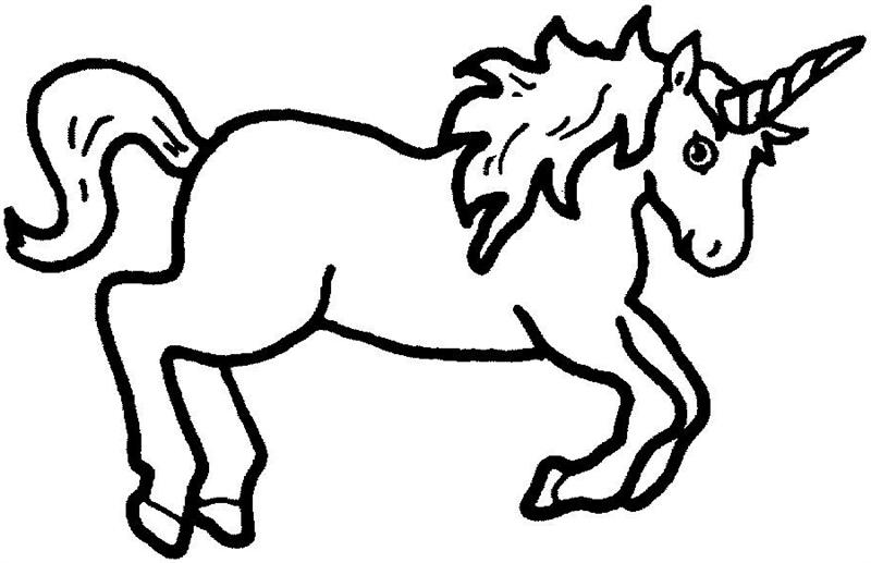800x517 Unicorn Midnight Musings