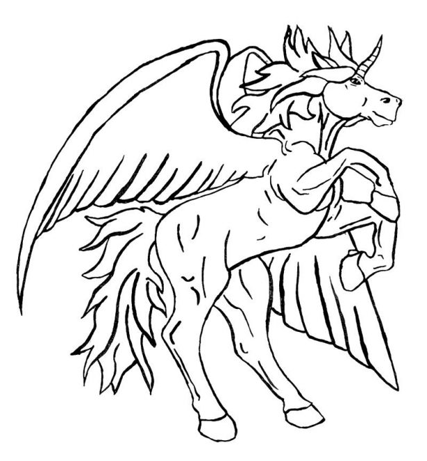 Unicorn Coloring Pages   Free download best Unicorn Coloring Pages ...