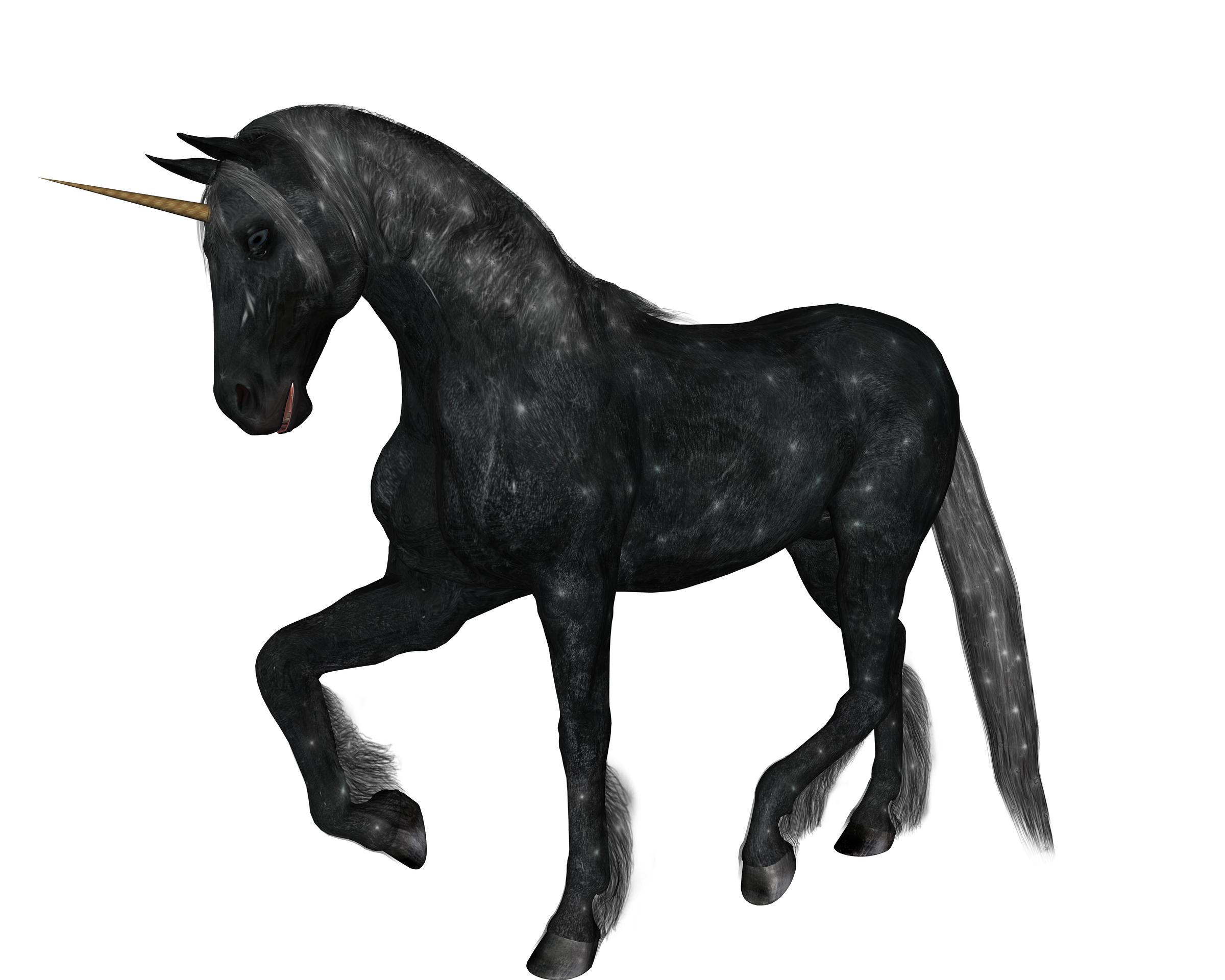 2400x1920 Unicorn Black Standing By Markopolio Stock On DeviantArt
