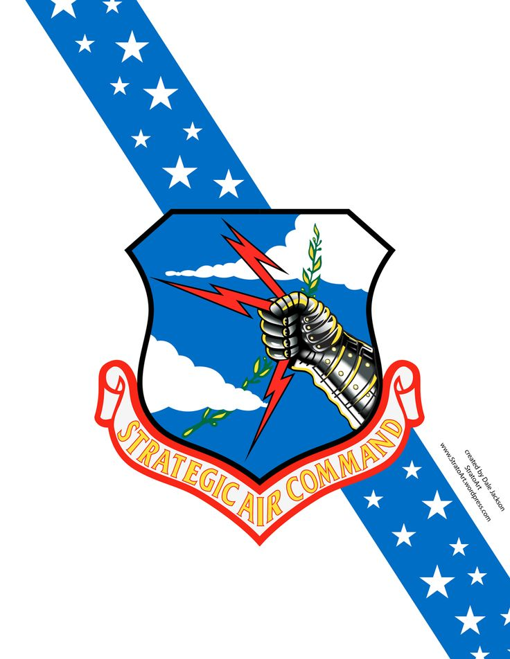 736x952 238 Best Air Force Images Aviation, Bag And Bombers
