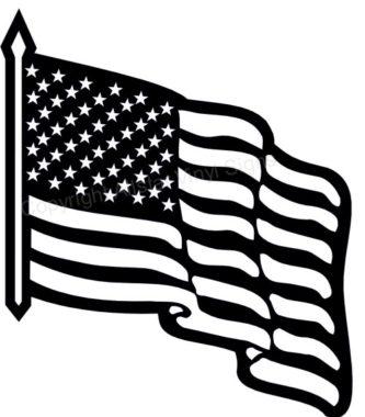 Usa flag white. Us black and free