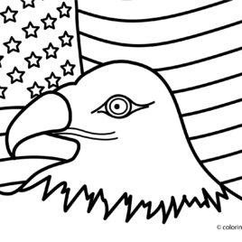 268x268 Usa Coloring Pages I Love Usa Coloring Page Free Usa Coloring