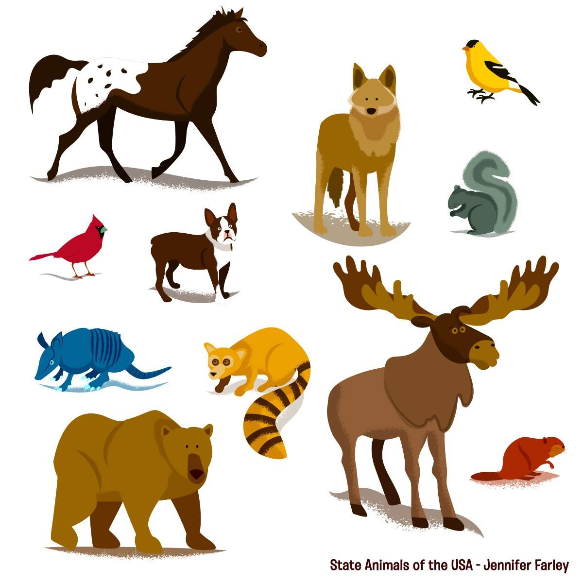 1200x1200 State Animals Of The Usa Map Jennifer Farley Illustration Amp Design