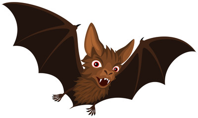 400x240 Search Photos Bat