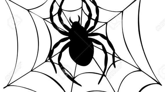 570x320 Spider Web Cartoon Drawing Spider Web Cartoon