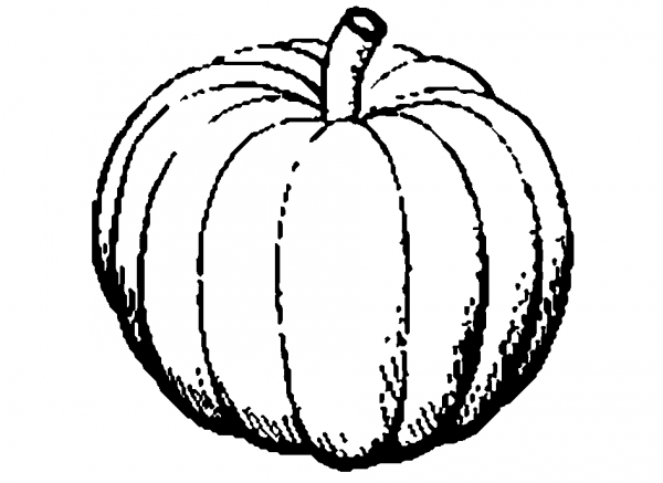 600x437 Vegetable Clipart Black And White 2 Nice Clip Art