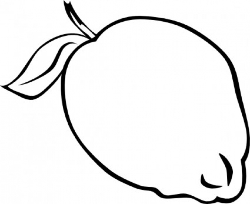 820x669 Fruit Clipart Black And White