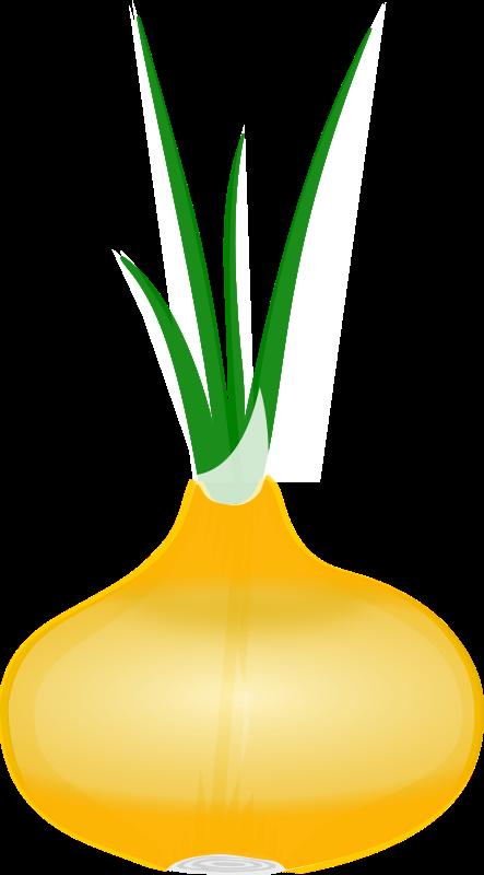 443x800 Vegetables Vegetable Clipart 3 Image