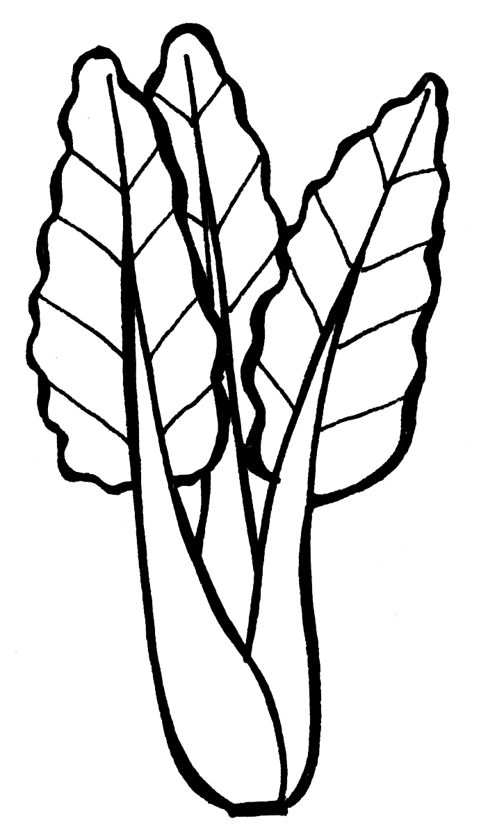 702x1194 Coloring Pictures Of Green Vegetables Murderthestout
