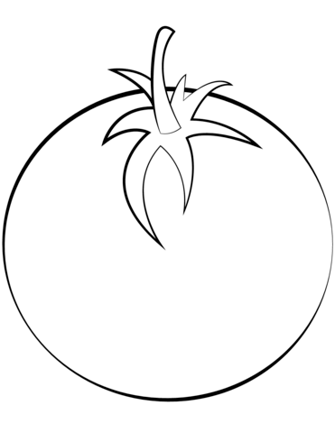371x480 Tomato Coloring Page Free Printable Pages