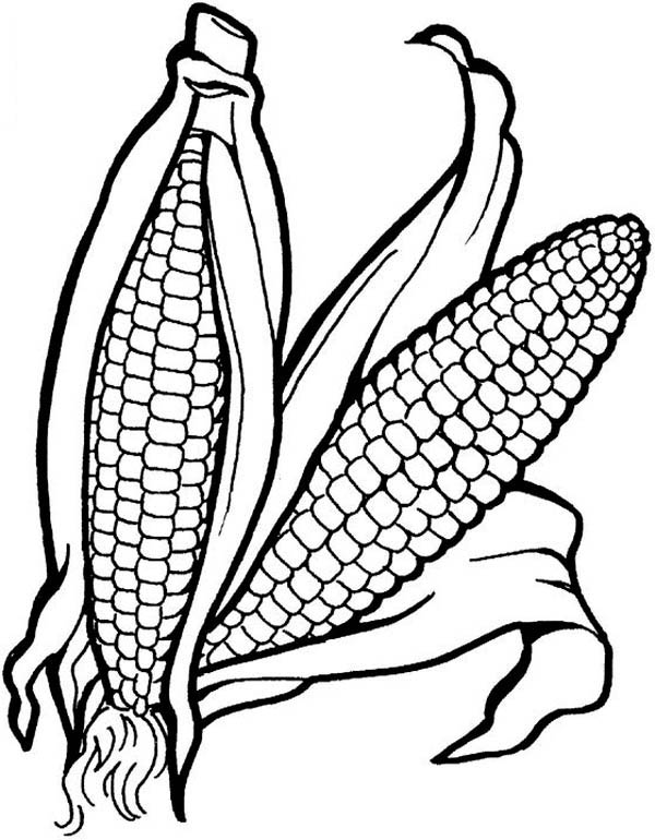 600x770 Vegetable Coloring Pages