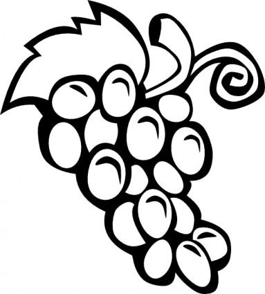 383x425 Fruit Clipart Black And White