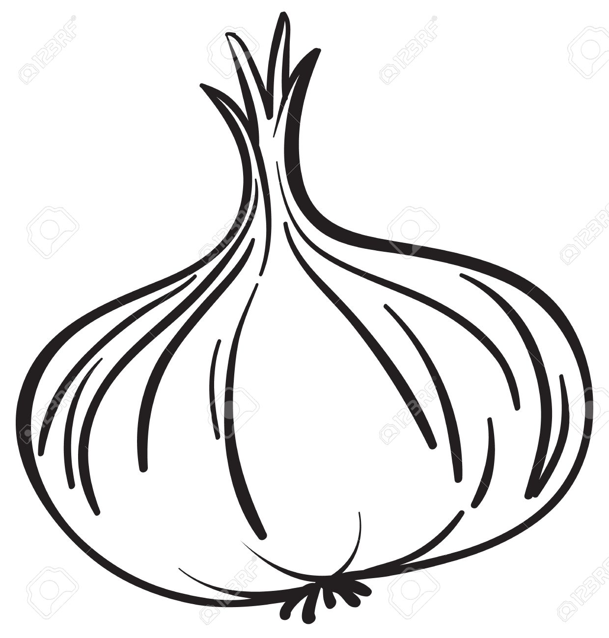 1240x1300 Black amp White clipart onion