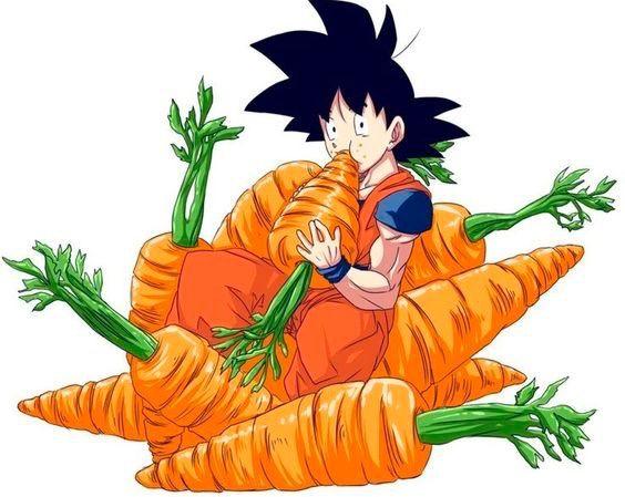 564x449 The Saiyan Race The Vegetables Anime Amino
