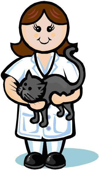 336x576 Cat Clipart Veterinarian