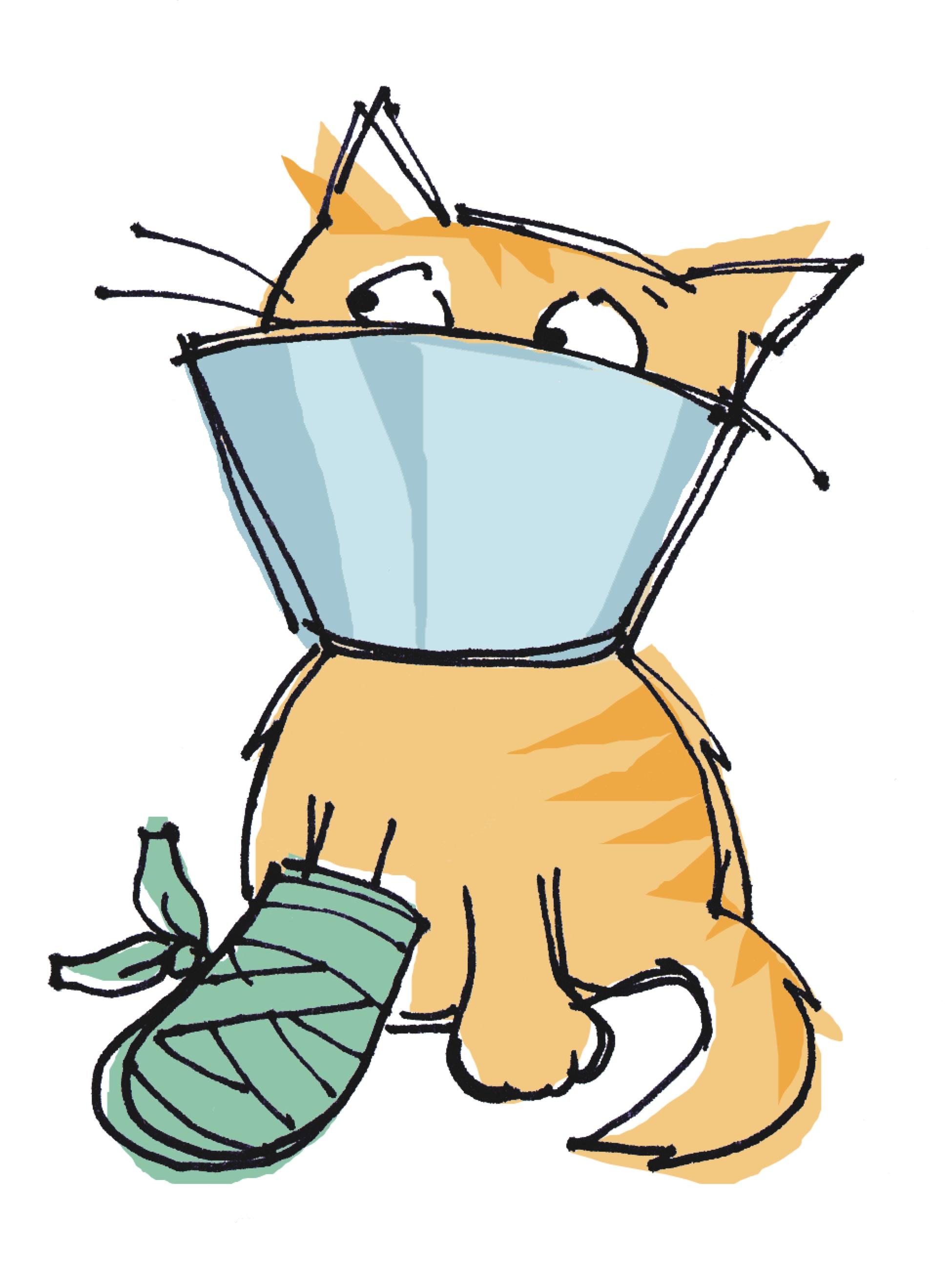 Veterinarian Clipart   Free download on ClipArtMag   Cartoon Vet Tech
