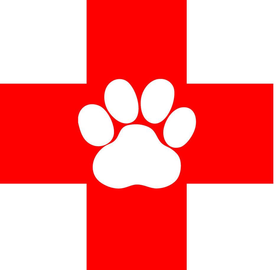Dog Cat Bird Clinic