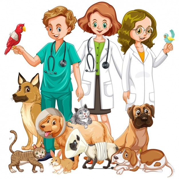 626x626 Veterinary Vectors, Photos And Psd Files Free Download