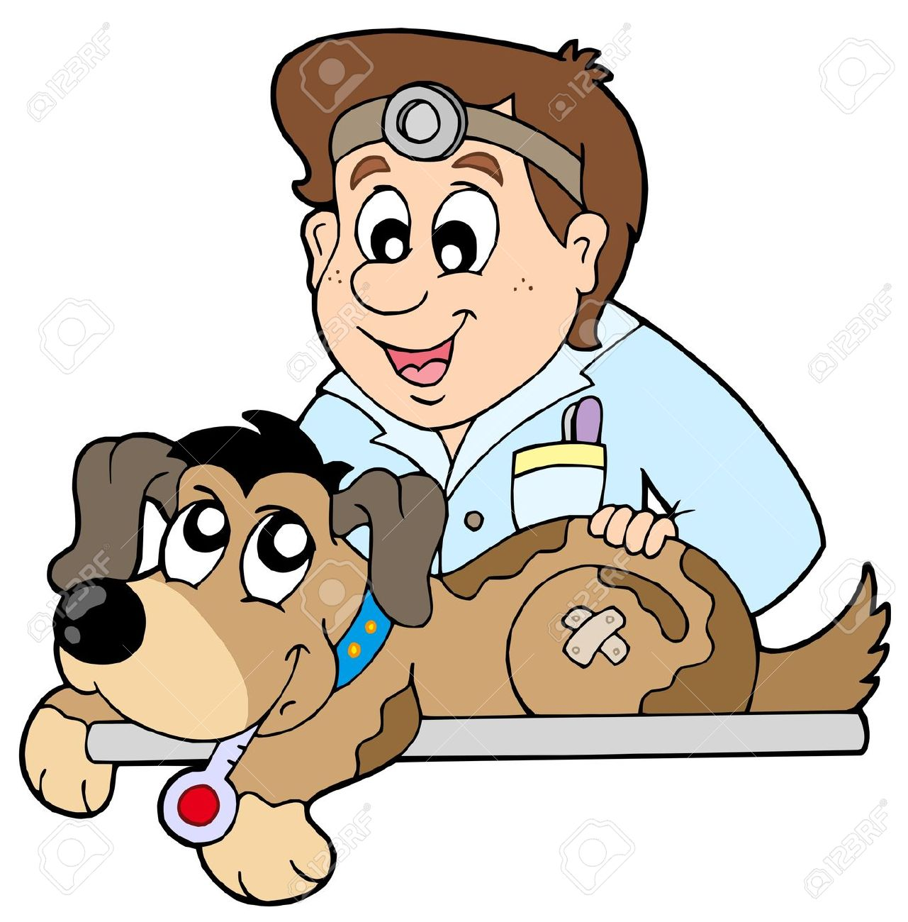1281x1300 Veterinary Practices Clipart