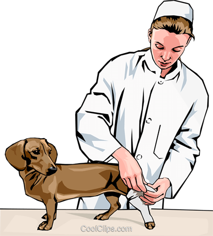 434x480 Vet Bandaging Dog's Leg Royalty Free Vector Clip Art Illustration
