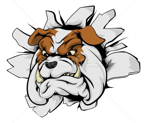 600x501 Aggressive Dog Stock Vectors, Illustrations And Cliparts Stockfresh