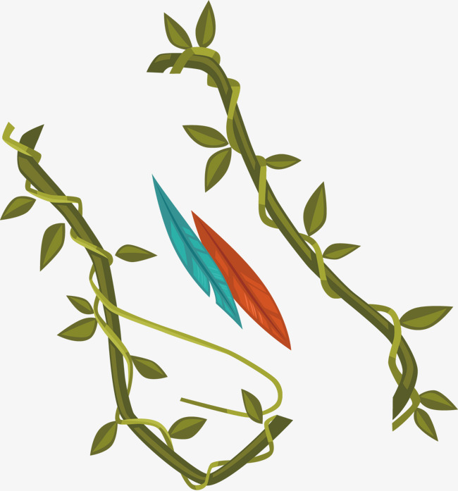 650x697 Vines Vector Material Png, Vine, Leaves, Branch Png And Vector
