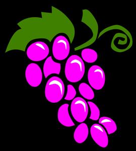 270x300 192 Grape Vines Clip Art Public Domain Vectors