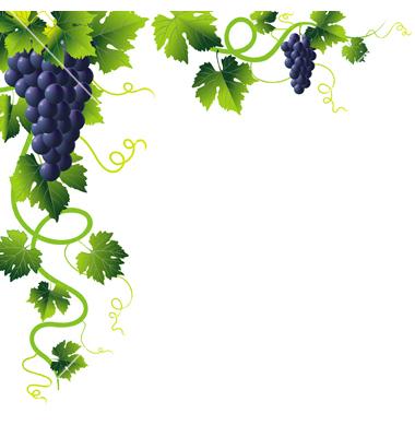380x400 Berry Vines Clipart