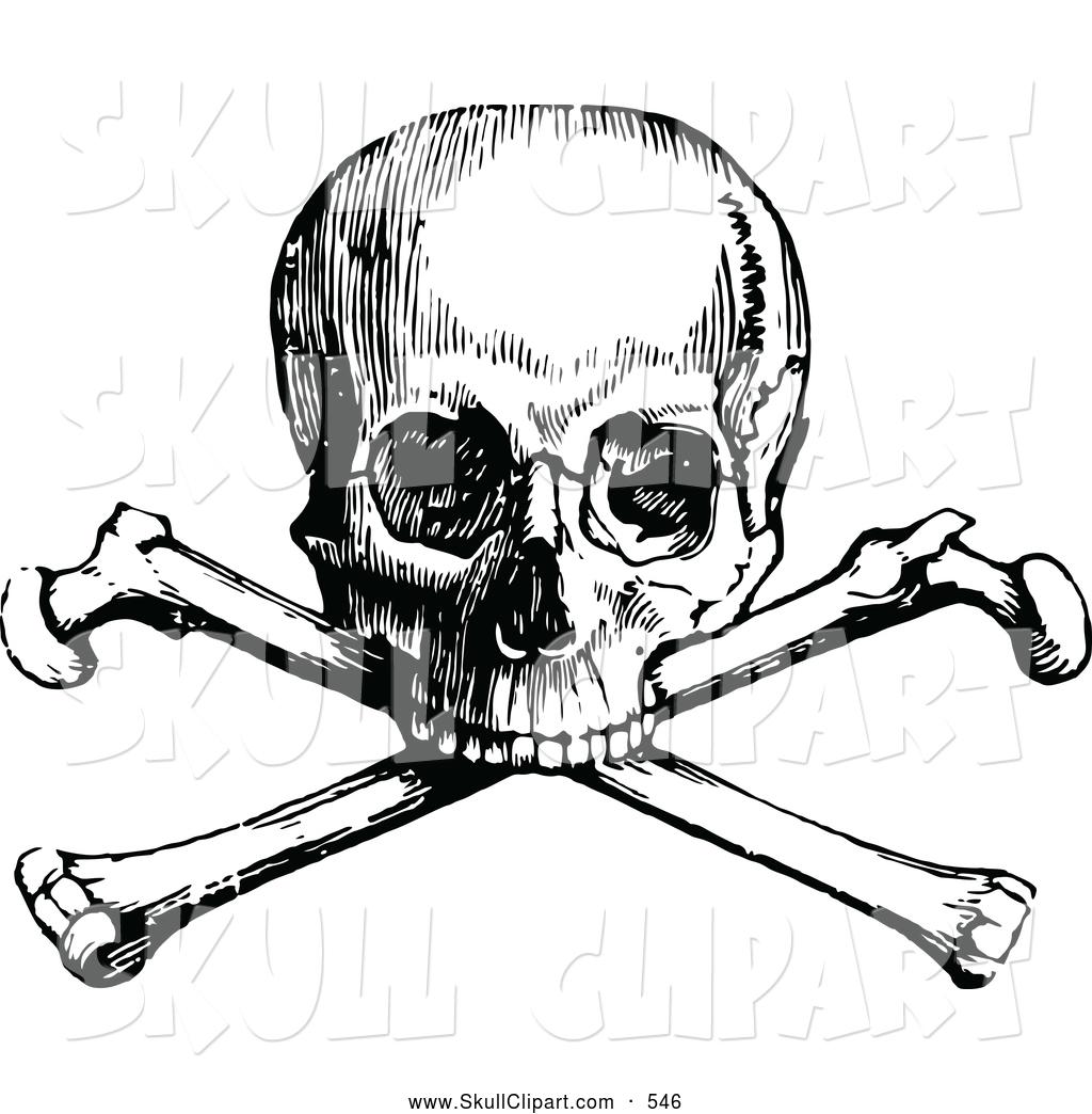 1024x1044 Vintage Skull Clip Art 55