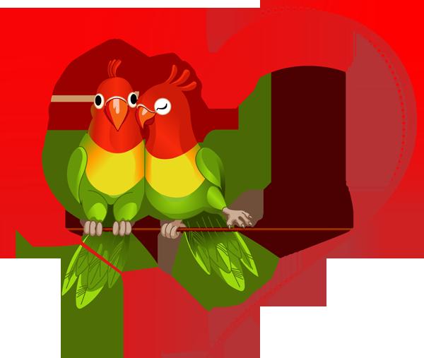 600x507 Love Bird Clip Art