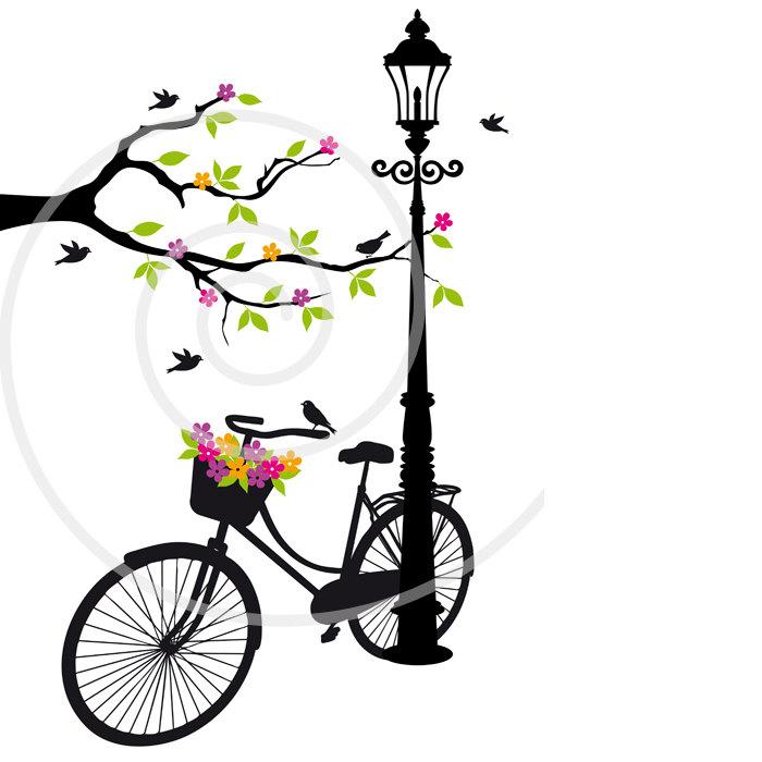 700x700 Pushbike Clipart Love Bird