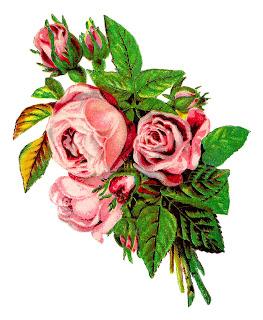 263x320 Antique Images Vintage Shabby Chic Pink Rose Clip Art Image
