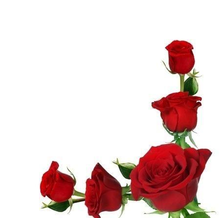 450x446 Corner Rose Clipart
