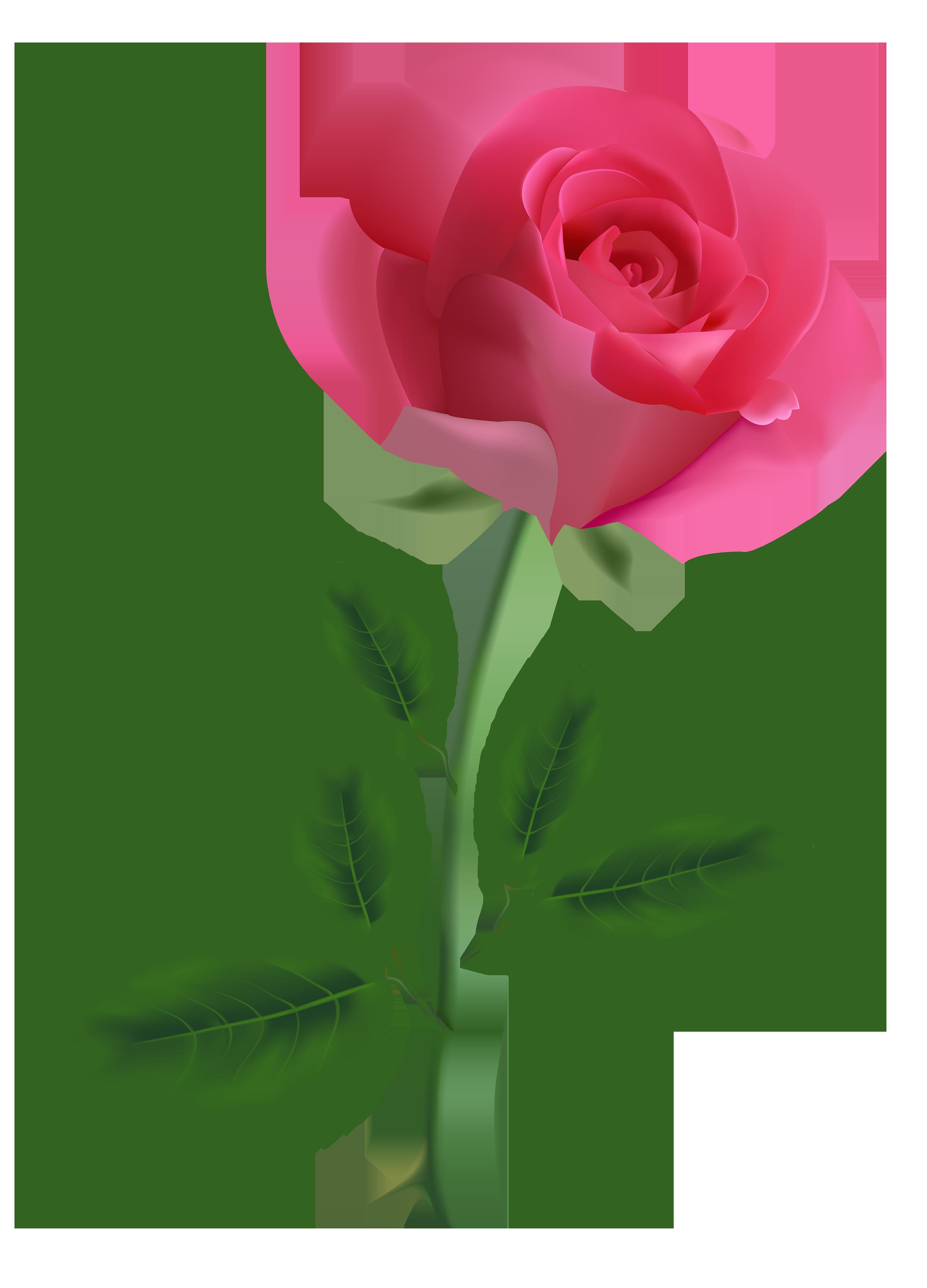 Vintage Roses Images Clipart Free Download Best Vintage Roses