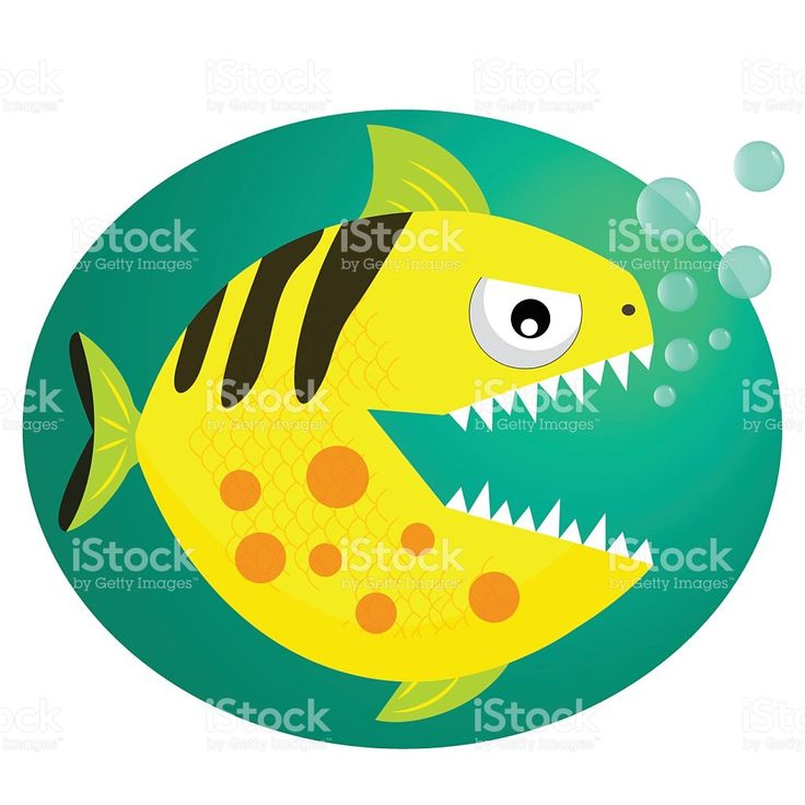 736x736 66 Best Cute Animals Fish Vector Animation Color Bubbles