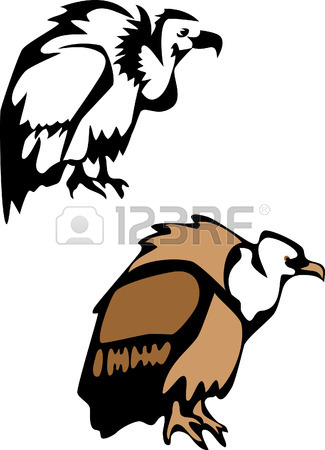 325x450 The Vector Illustration Of The Aggressive Wild Vulture Staring