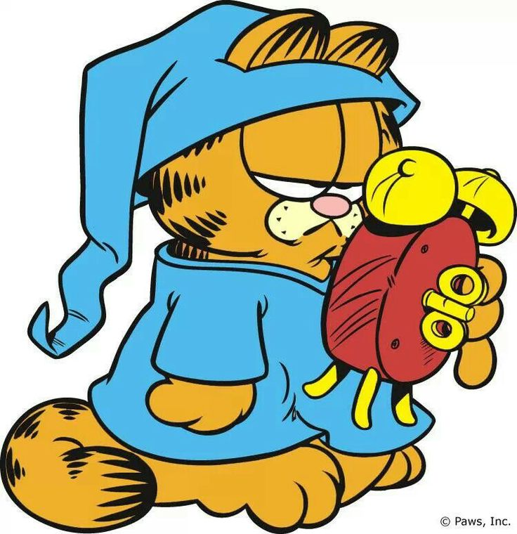 736x760 568 Best Garfield Images Drawings, Friends And Books