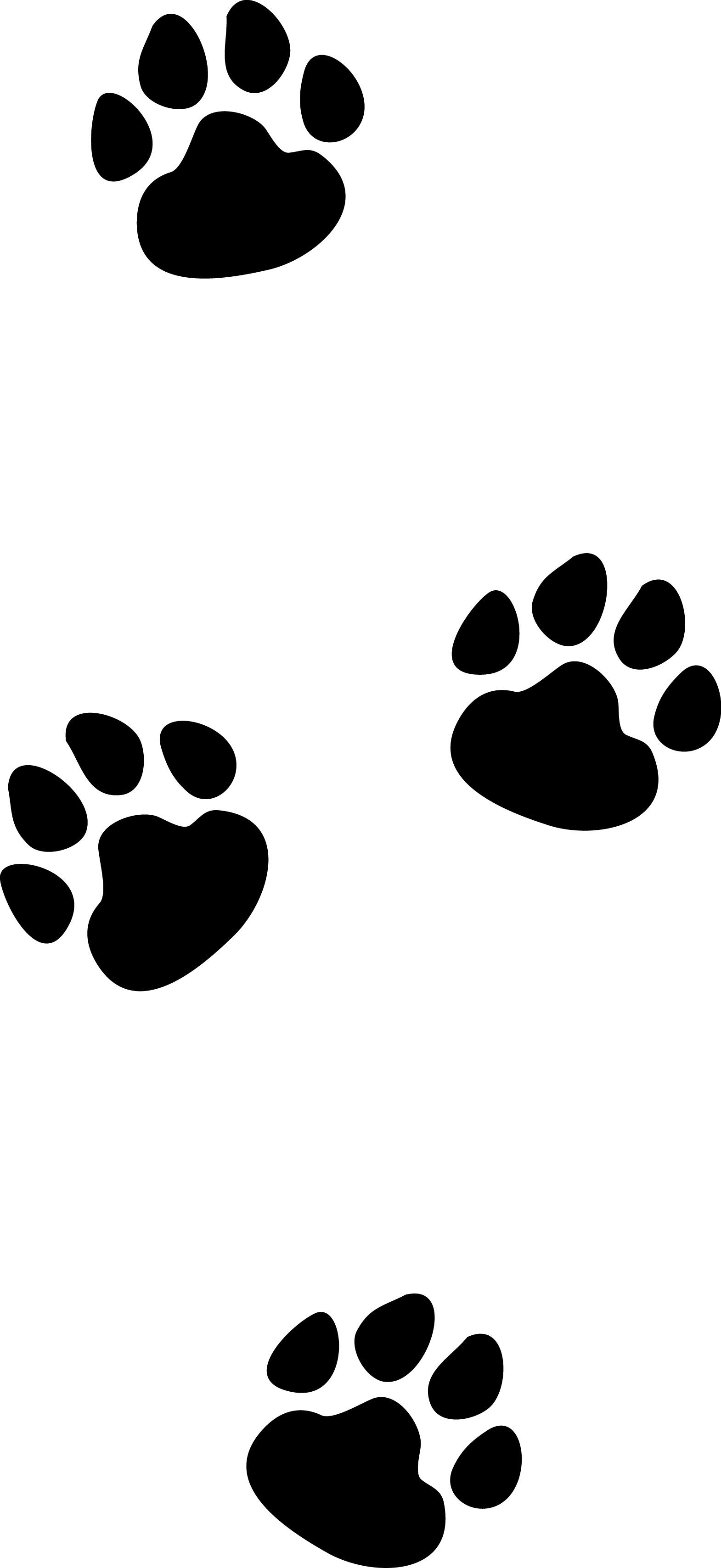 1570x3416 Cat Footprints