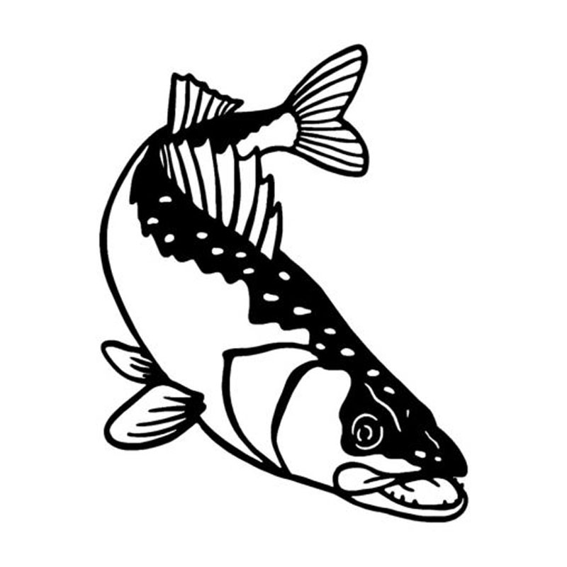 800x800 Buy Walleye Decal And Get Free Shipping
