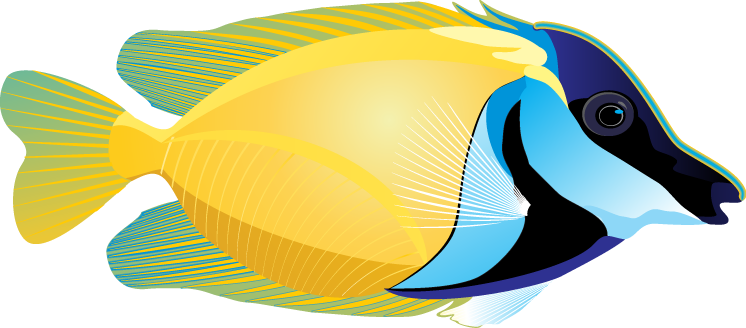 746x328 Free Clipart Of Tropical Fish