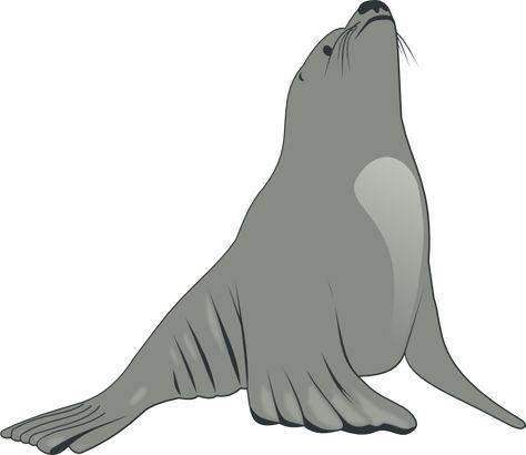 474x410 Sea Lion Clip Art Free Clipart Panda