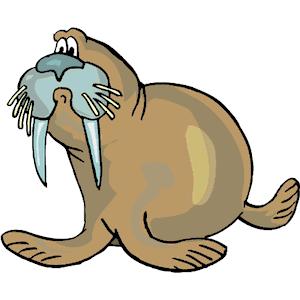 300x300 Walrus Clip Art Download Wikiclipart
