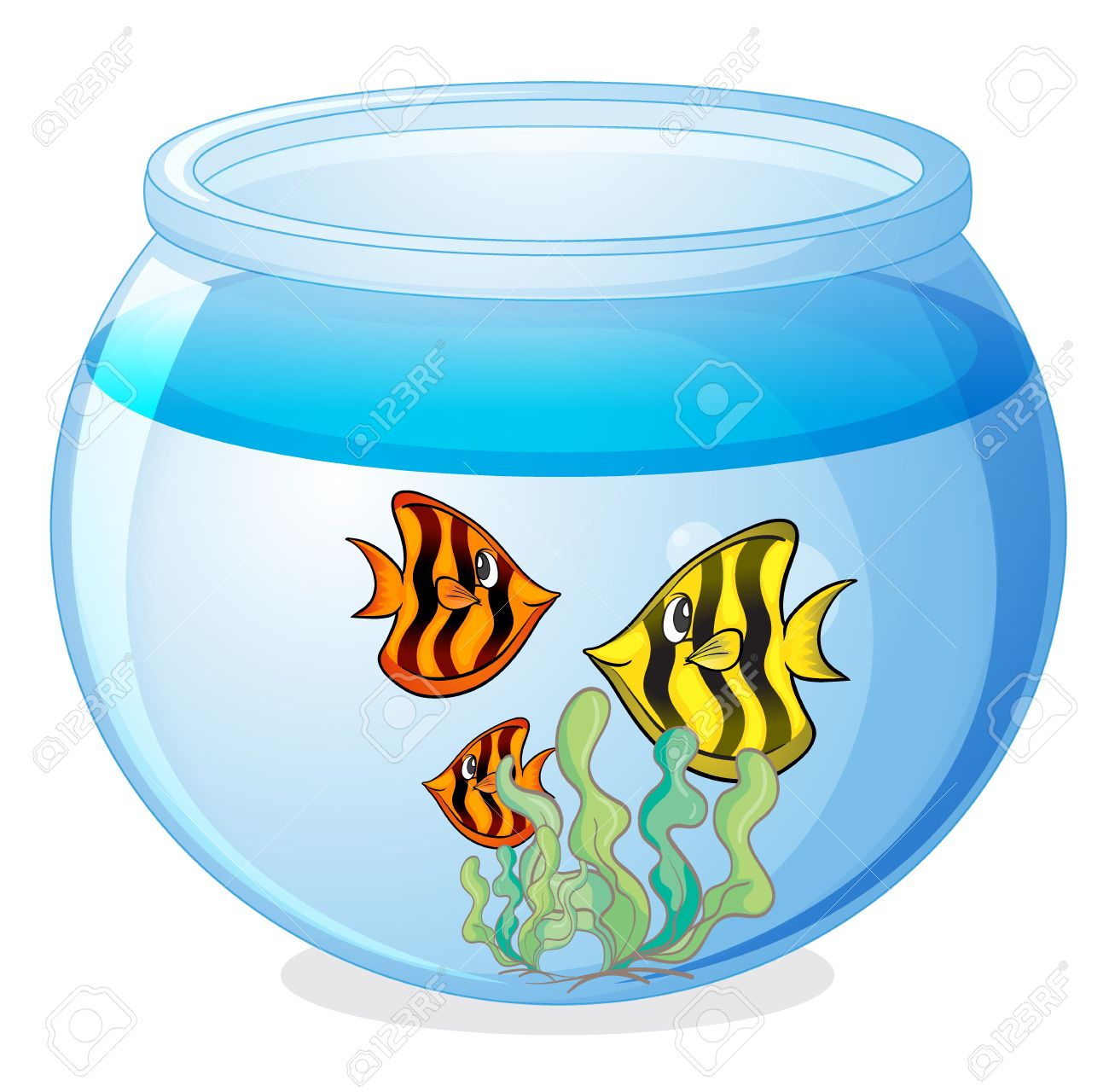 1300x1280 Illustration Of A Water Bowl And A Fish On A White Background