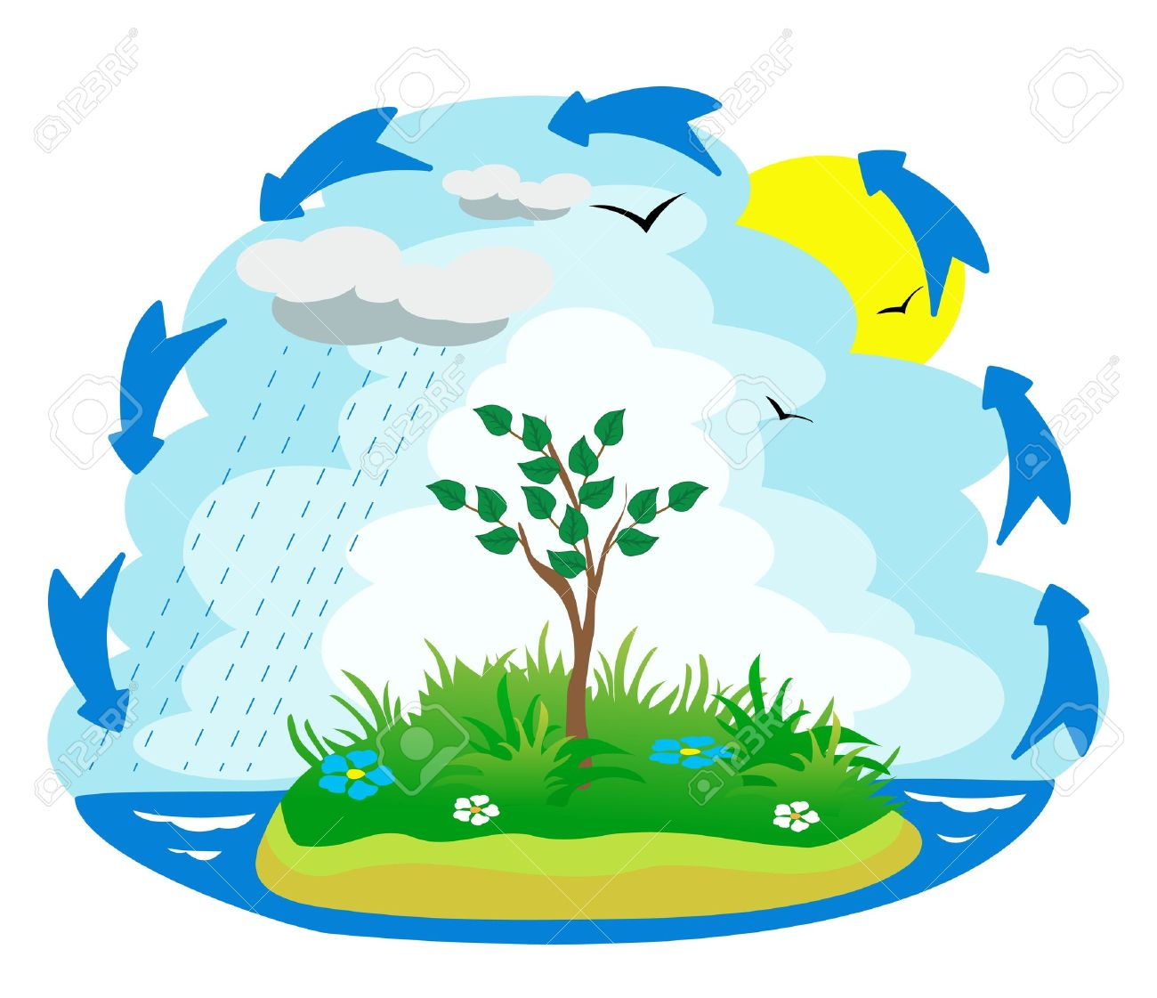 1300x1121 Water Cycle Clip Art Free – 101 Clip Art