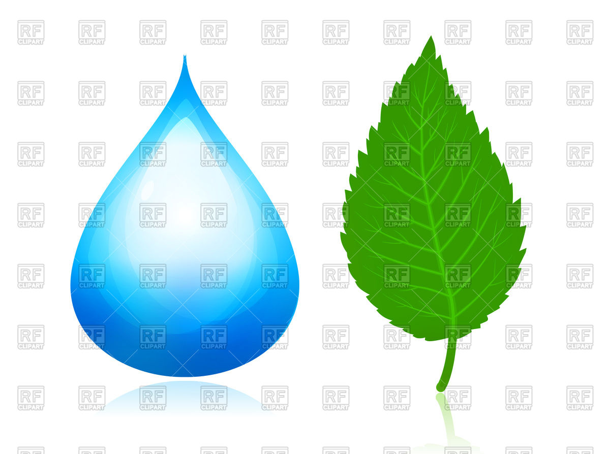 1200x894 Blue Water Drop And Green Leaf Royalty Free Vector Clip Art Image