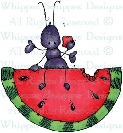 Water Melon Clipart