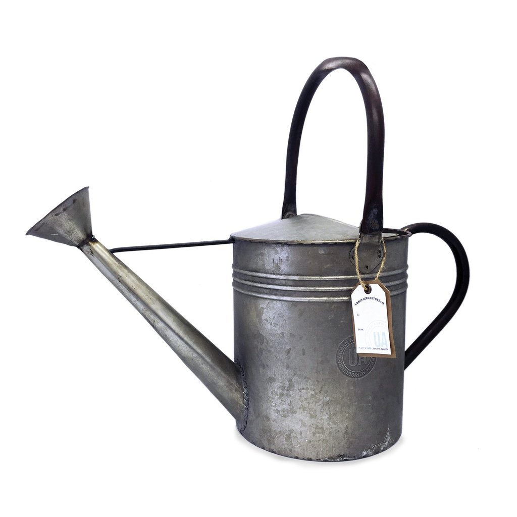 1024x1024 Antique Watering Can Urban Agriculture Co.