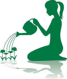 255x300 Watering Plants Clipart Image