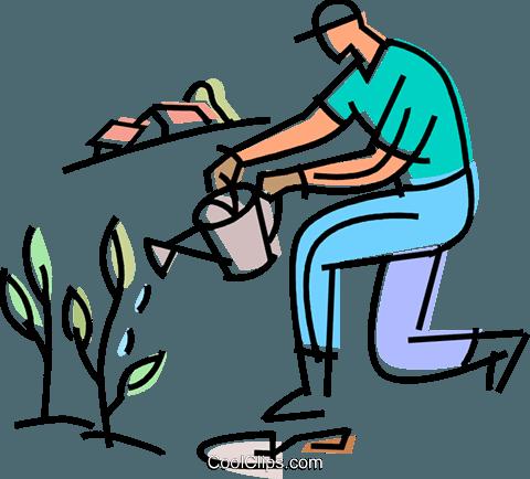 480x434 Gardener Watering His Plants Royalty Free Vector Clip Art