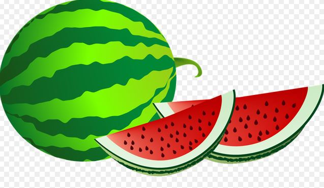 637x370 Watermelon Clipart Black And White All Butterfly Images